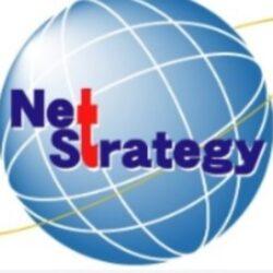 株式会社ネットストラテジー